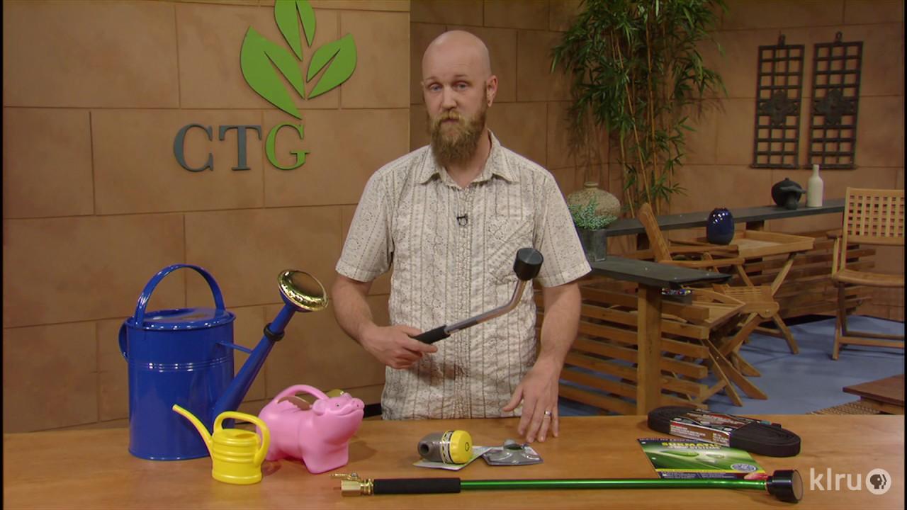 Top Watering Mistake to Avoid |Neil Schmidt |Central Texas Gardener ...