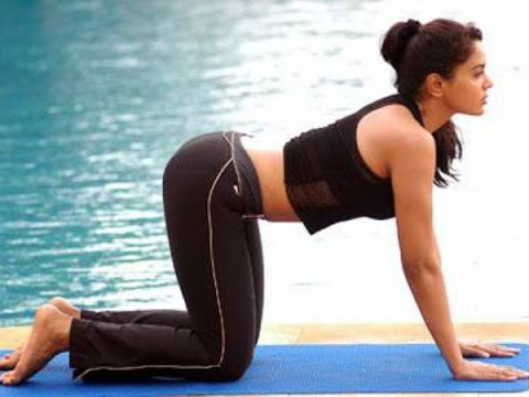 Image result for sameera reddy yoga