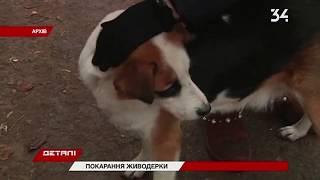 На Днепропетровщине пенсионерке дали пять лет: убила бездомных собак на глазах у детей