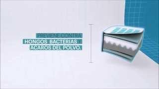 Descubre la importancia de tener un colchón desinfectado