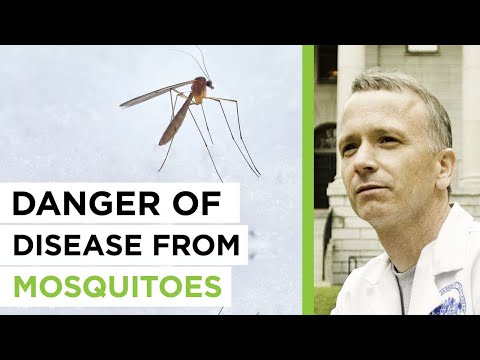 The Empowering Neurologist - David Perlmutter, MD and Dr. Mi