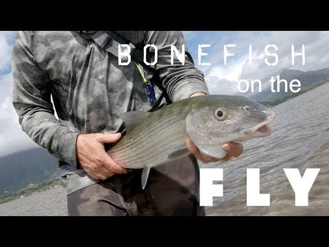 Bonefish Fly Fishing Hawaii - Oahu - Walking The Flats With A Guide!