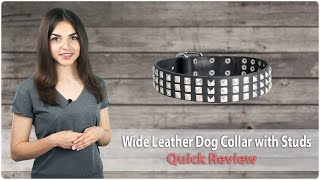 Wide Leather Dog Collar With Studs - Quick Review From Fordogtrainers