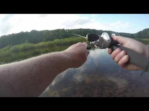 Bex Goes Bank Fishing At Tridelphia (Pike And Largemouth Bass)
