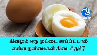 If you eat an egg every day, what are the advantages? - Tamil TV