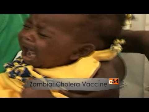 Cholera vaccination project in Zambia