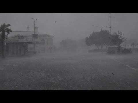 Cyclone Debbie  'screaming And Howling'