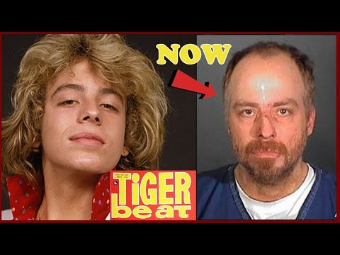 Tiger VS Lion. Who would win? from YouTube · Duration:  11 minutes 9 seconds