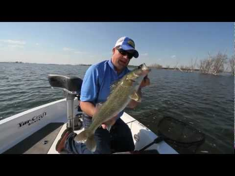 Casting Soft Plastics for Walleye