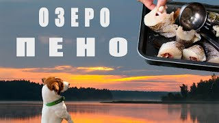 Щука жрёт в ЖАРУ Два дня рыбалки на красивом озере ПЕНО с семьёй Уха из щуки Попали в ГРОЗУ