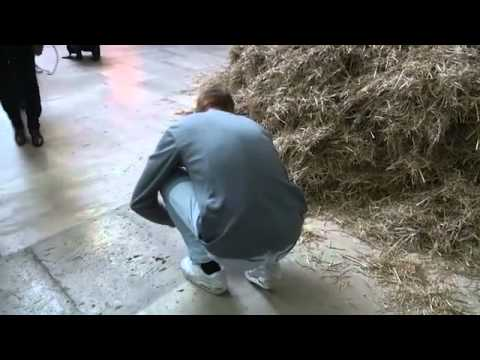 Artist Looks for Needle in a Haystack, Literally