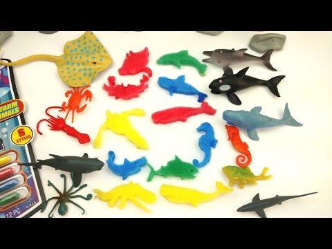 Magic Grow Foam Sea Animal Capsules/Growing Animal Toys In water/Learn Names of animal Toys/Shark
