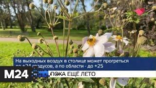 """Москва и мир"": пока еще лето и беспорядки в США - Москва 24"