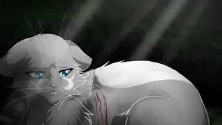 Коты Воители-клип на песню Кукла