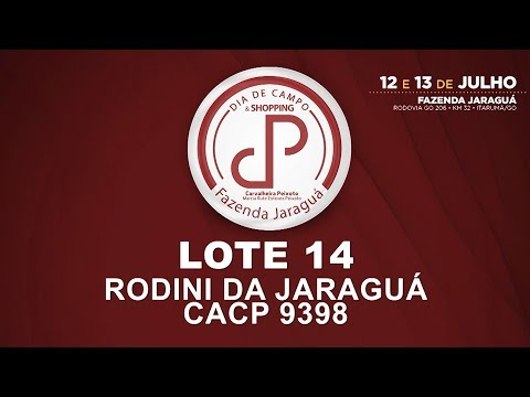 LOTE 14 (CACP 9398)