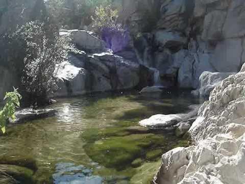 SIERRA DE LA LAGUNA, BAJA CALIFORNIA SUR, NOV 2010