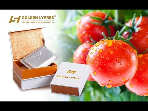 LYCOPENE & GOLDEN LYPRES Dietary supplement