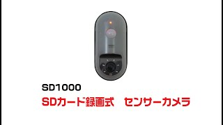 SD1000 SD録画式センサーカメラ PV thumbnail