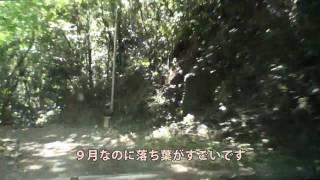 【酷道ラリー】高千穂線沿線 その9-2