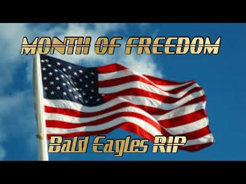 Фото Month Of Freedom FPV RIP