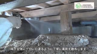 シロアリ駆除・予防の施工事例【木材防腐防蟻処理協同組合】
