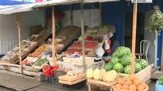 Сотрудники Россельхознадзора провели рейд по рынкам Маймы и Горно-Алтайска(, 2016-07-20T11:28:38.000Z)