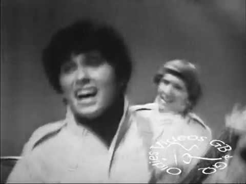 Don & The Goodtimes - I Could Be So Good To You (1967)