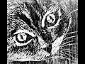 El Gato Negro Edgar Allan Poe