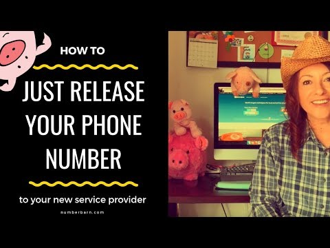 Ask the Pig Episode #1: Just Release my Number