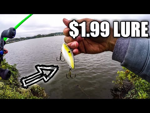 Catching FALL Bass With A $1.99 Lipless Crankbait (Met A SUBSCRIBER! )