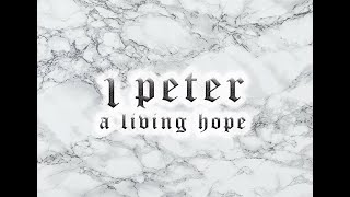 1 Peter Series - Week 13