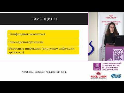 Соколова Е. А. - Изменение показателей общего анализа крови и их интерпретация