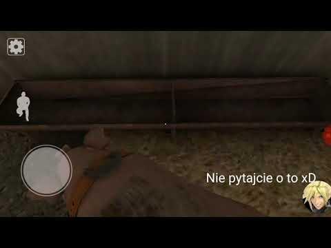 Fortek Ujeżdżacz świń!