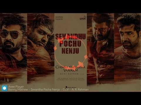Sevanthu Pochu Nenju - Chekka Chivantha Vaanam - A. R. Rahman - Instrumental