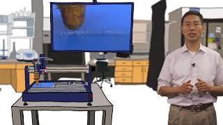 Wyss Focus - 3D Organ Engineering thumbnail