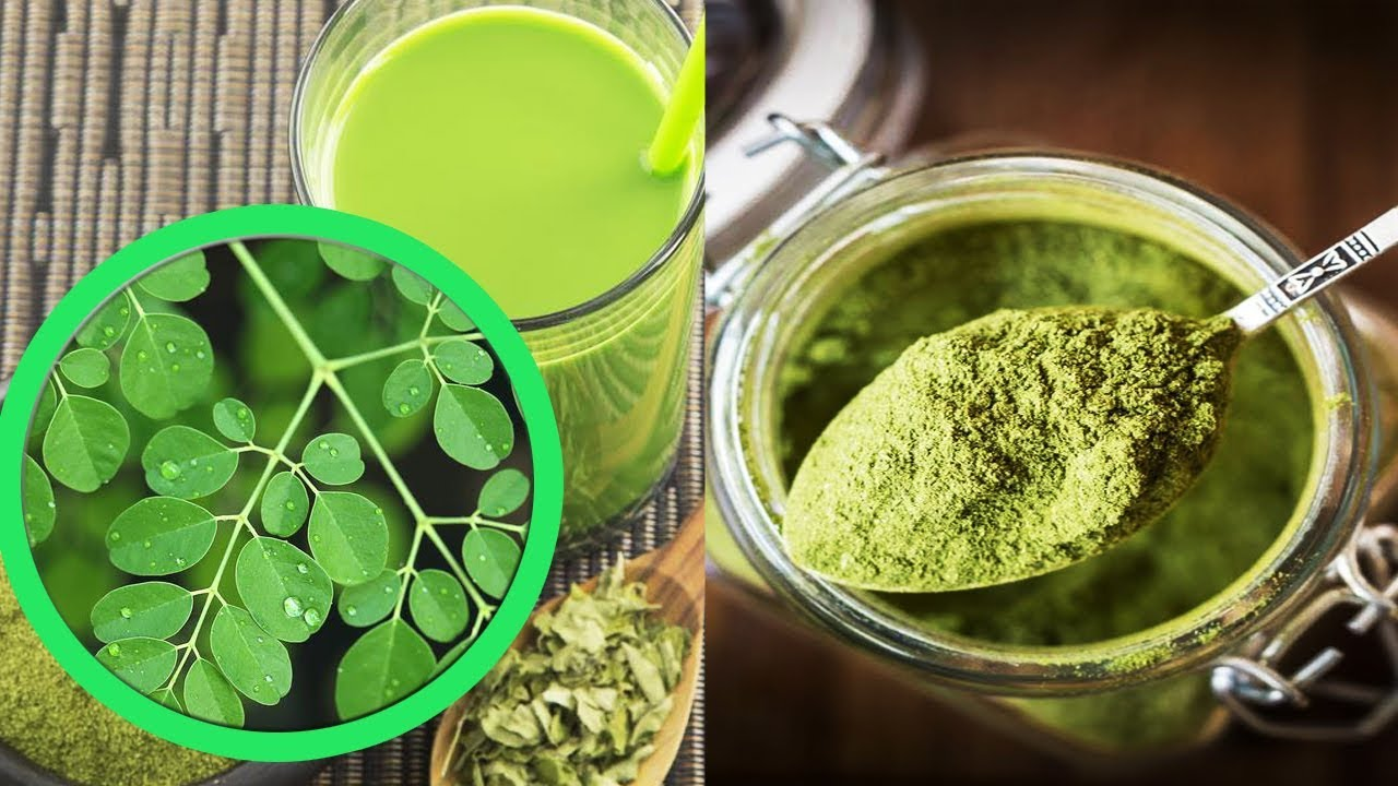 Image result for TO YOUR HEALTH----All Things Moringa