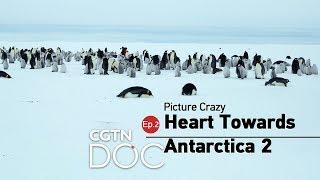 Picture Crazy: Heart Towards Antarctica 2