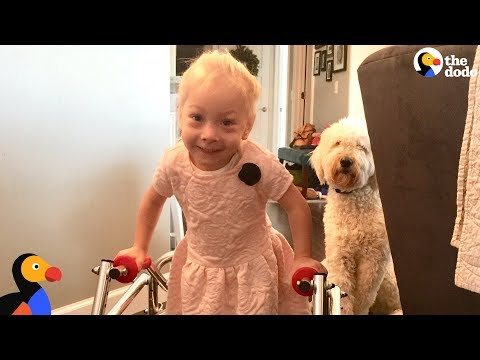 Big D - Young Girls Takes her First Steps, Puppy Celebrates