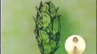 葉の茶CM1
