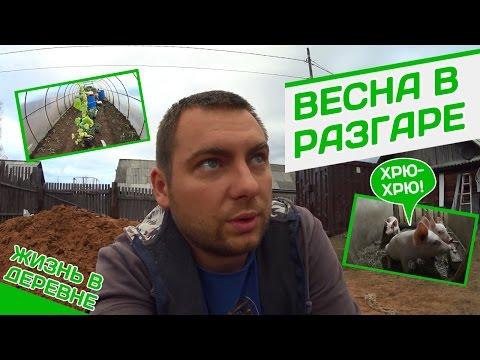 Блядство в деревне. Бесплатное онлайн порно видео