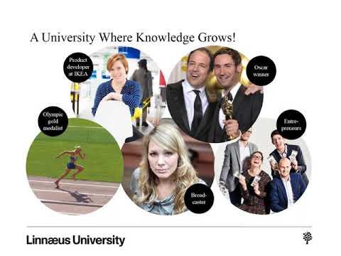 Study Abroad with USAC at Linnaeus University