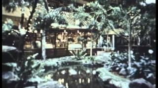 The Case of ESP -- Original Uncut 1983 BBC Film