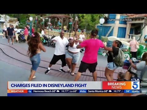 J. Cortez - CHARGES FILED: Update of Family Who Fought At Disneyland