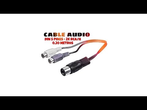 Video de Cable de audio DIN 5 pines - 2x RCA hembra 0.20 M Negro