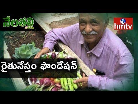 Rythu Nestham Foundation to Conduct Awareness Program On Organic Farming In Hyd| Nela Talli | hmtv