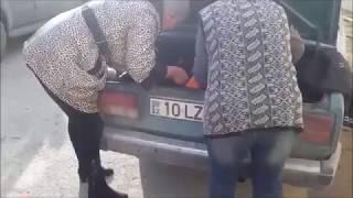 Спасение собаки, которую жестоко избили