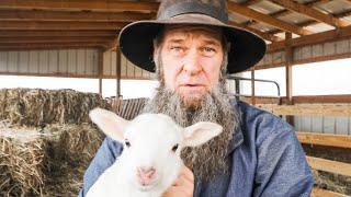 What NO HOMESTEADER talks about! OFF GRID | HOMESTEADING