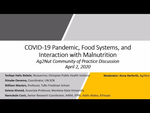 Ag2Nut/ANH Academy Webinar: COVID-19, Food Systems, and Interaction with Malnutrition