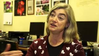 Conhecendo a UFRGS - Herbário ICN