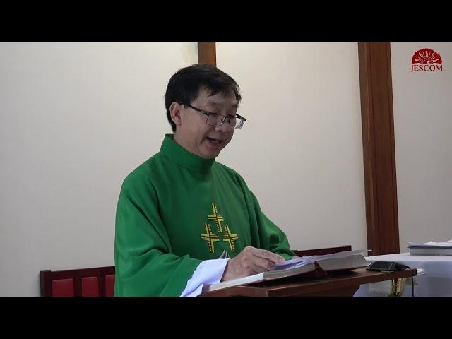 Bài giảng Chúa nhật 29 thường niên năm C - Lm.  Đa Minh Nguyễn Đức Hạnh, S.J.